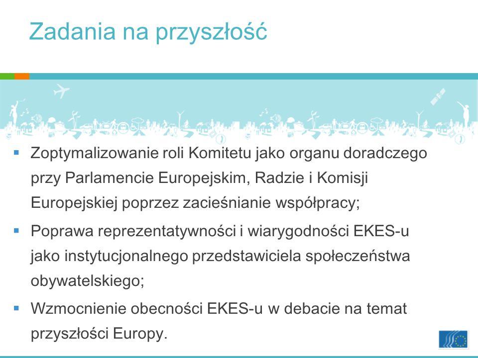 Zadania na przyszłość Zoptymalizowanie roli Komitetu jako organu doradczego przy Parlamencie Europejskim, Radzie i Komisji Europejskiej poprzez zacieśnianie współpracy; Poprawa reprezentatywności i wiarygodności EKES-u jako instytucjonalnego przedstawiciela społeczeństwa obywatelskiego; Wzmocnienie obecności EKES-u w debacie na temat przyszłości Europy.