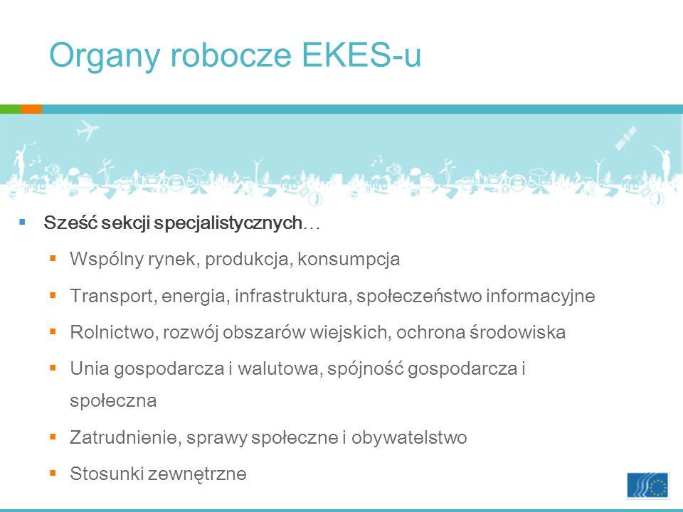 Organy robocze EKES-u … i cztery nowsze organy Komisja Konsultacyjna ds.