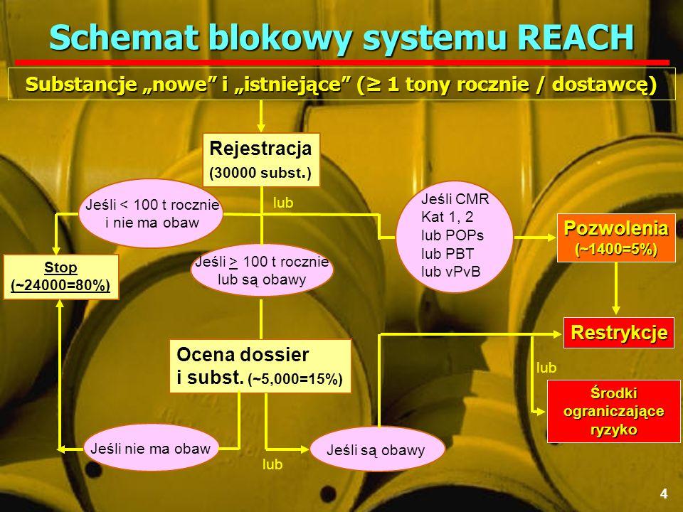 28 grudnia 2006 r.IV Mazowieckie Spotkanie Partnerów Przemysłu Chemicznego Polska Konfederacja Pracodawców Prywatnych Lewiatan, Warszawa 35 Jak chcemy robić.