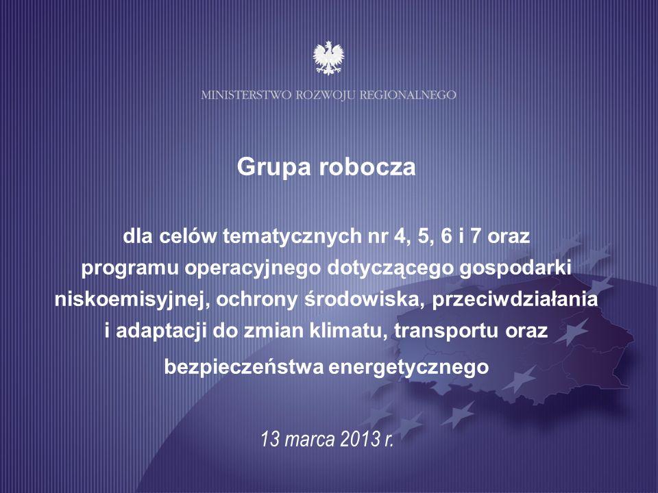 1 Grupa robocza dla celów tematycznych nr 4, 5, 6 i 7 oraz programu operacyjnego dotyczącego gospodarki niskoemisyjnej, ochrony środowiska, przeciwdzi