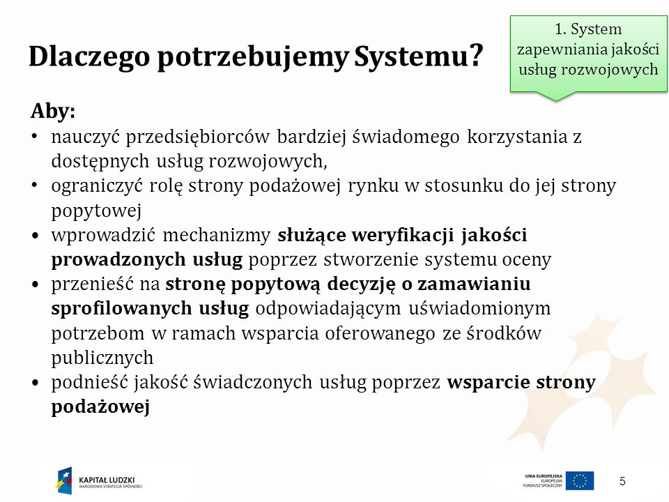 5 Dlaczego potrzebujemy Systemu ? Aby: nauczyć przedsiębiorców bardziej świadomego korzystania z dostępnych usług rozwojowych, ograniczyć rolę strony