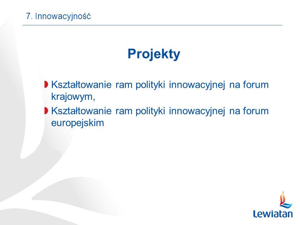 Projekty Kształtowanie ram polityki innowacyjnej na forum krajowym, Kształtowanie ram polityki innowacyjnej na forum europejskim 7. Innowacyjność