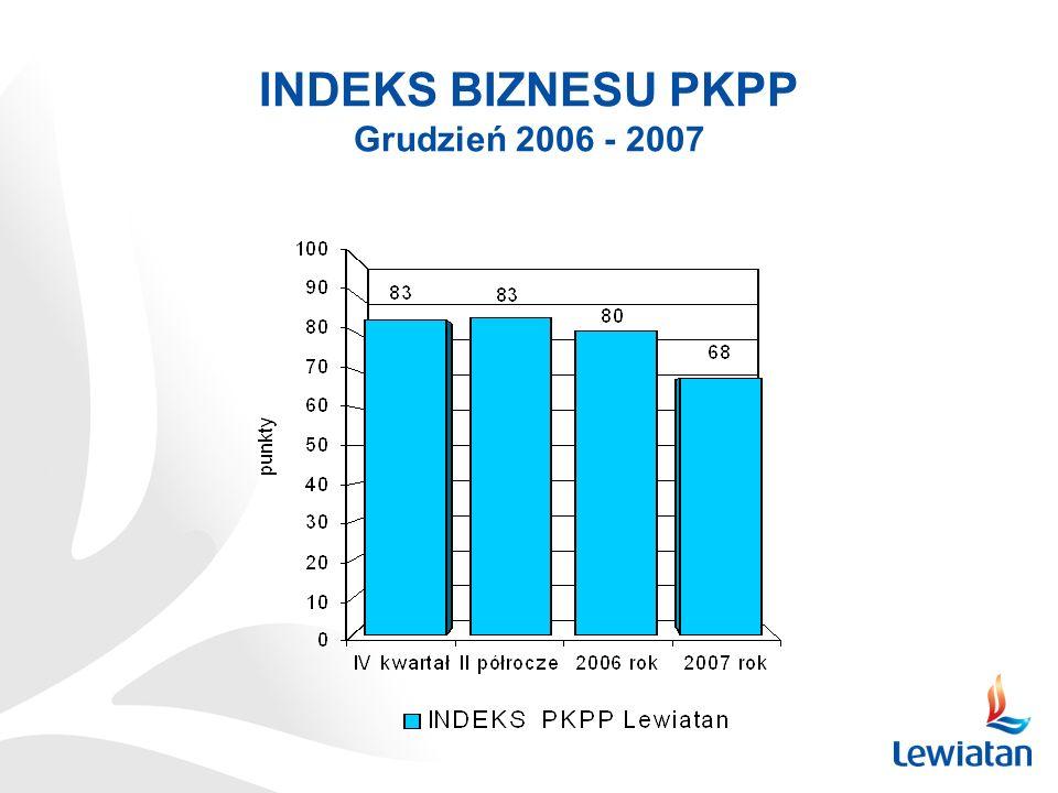 INDEKS BIZNESU PKPP Grudzień 2006 - 2007