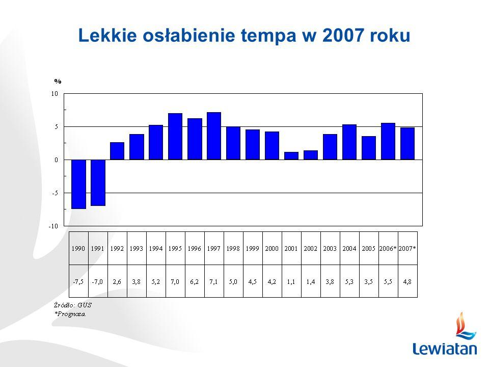 Lekkie osłabienie tempa w 2007 roku
