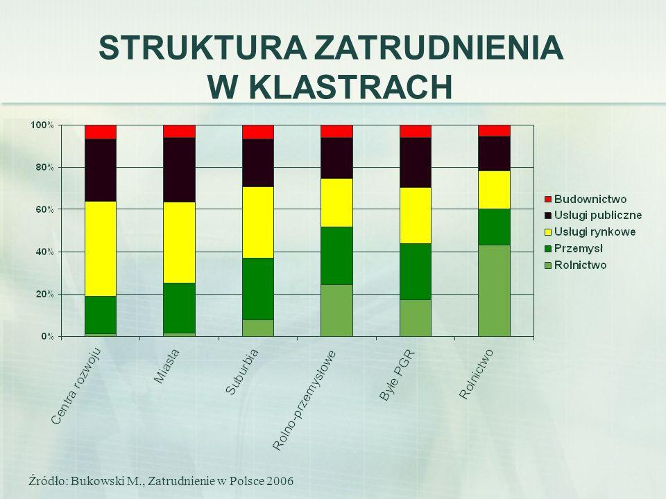 STRUKTURA ZATRUDNIENIA W KLASTRACH Źródło: Bukowski M., Zatrudnienie w Polsce 2006