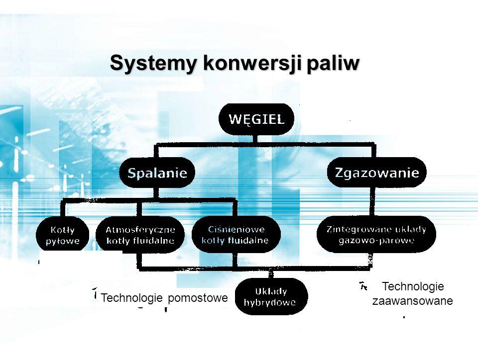 Jerzy Buzek Poseł do Parlamentu Europejskiego Warszawa, 13.10.2008 Debata PKPP Lewiatan Partnerstwo dla klimatu Dziękuję za uwagę Czy energia jest luksusem
