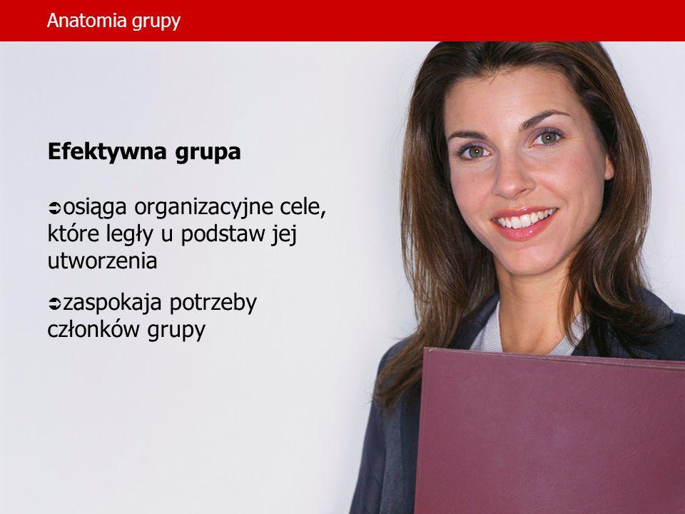 Anatomia grupy Efektywna grupa osiąga organizacyjne cele, które legły u podstaw jej utworzenia zaspokaja potrzeby członków grupy