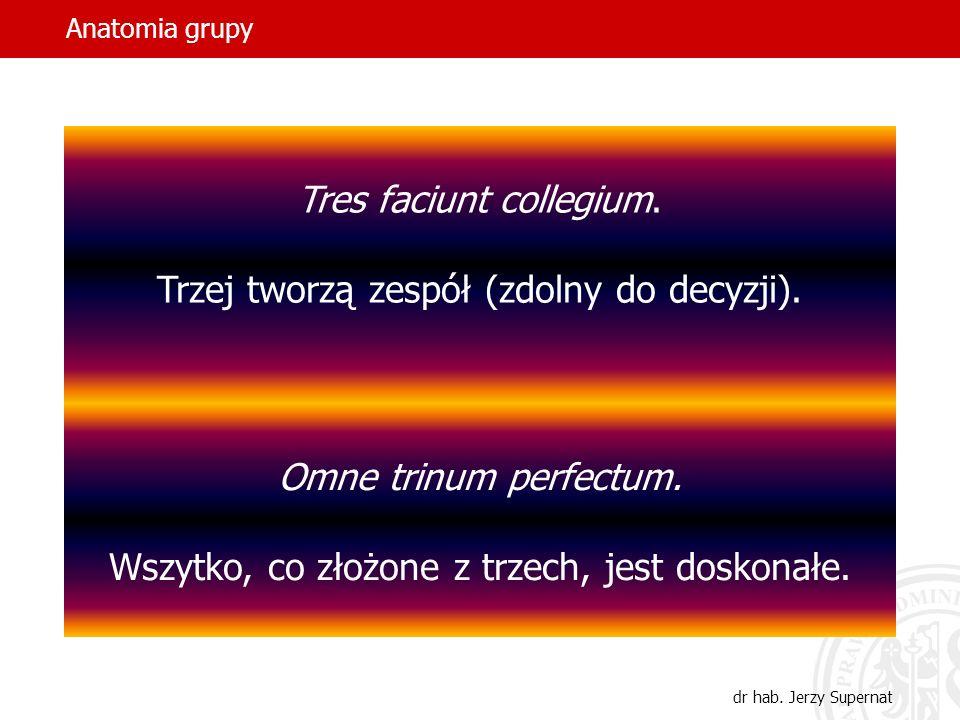Anatomia grupy dr hab. Jerzy Supernat Tres faciunt collegium. Trzej tworzą zespół (zdolny do decyzji). Omne trinum perfectum. Wszytko, co złożone z tr