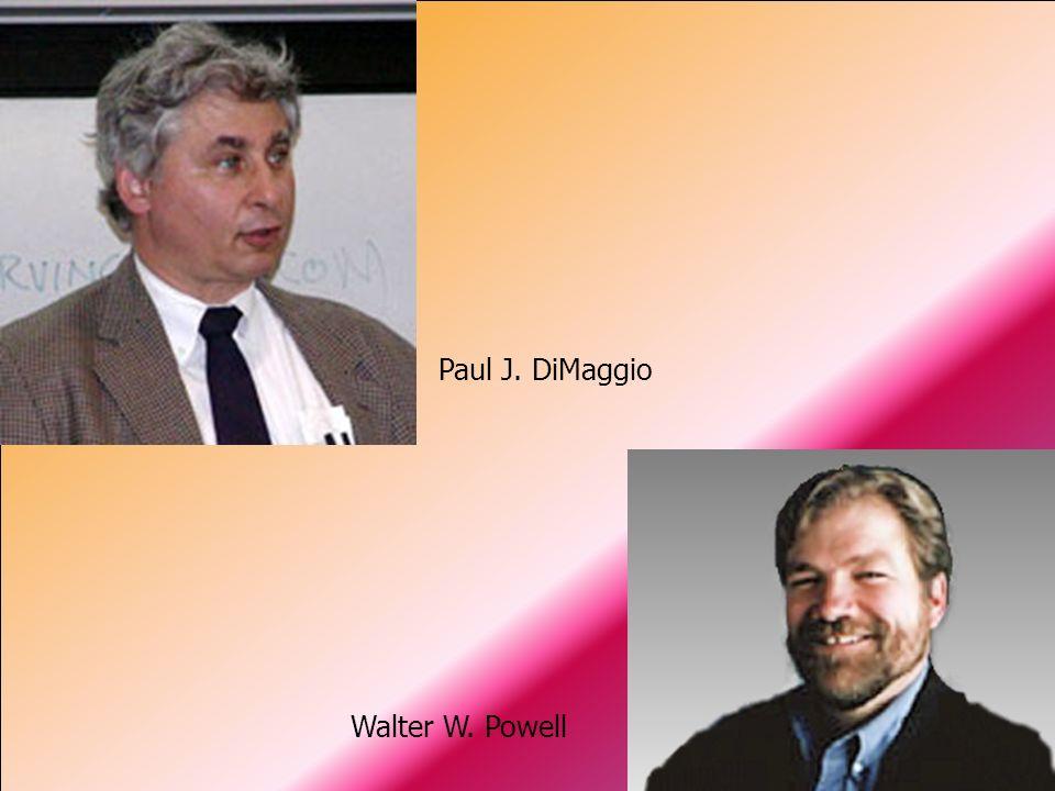 Projektowe uwarunkowania struktury organizacyjnej dr hab. Jerzy Supernat Paul J. DiMaggio Walter W. Powell