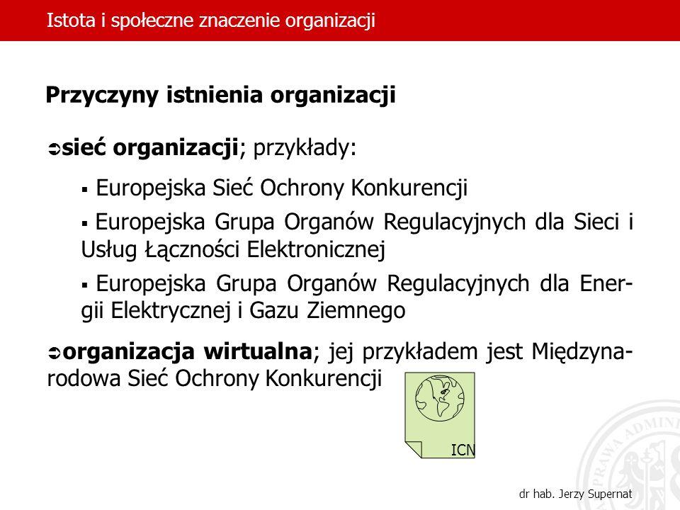 Istota i społeczne znaczenie organizacji dr hab. Jerzy Supernat sieć organizacji; przykłady: Europejska Sieć Ochrony Konkurencji Europejska Grupa Orga