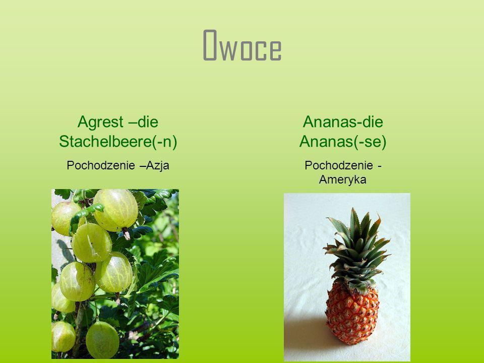 Owoce Agrest –die Stachelbeere(-n) Pochodzenie –Azja Ananas-die Ananas(-se) Pochodzenie - Ameryka