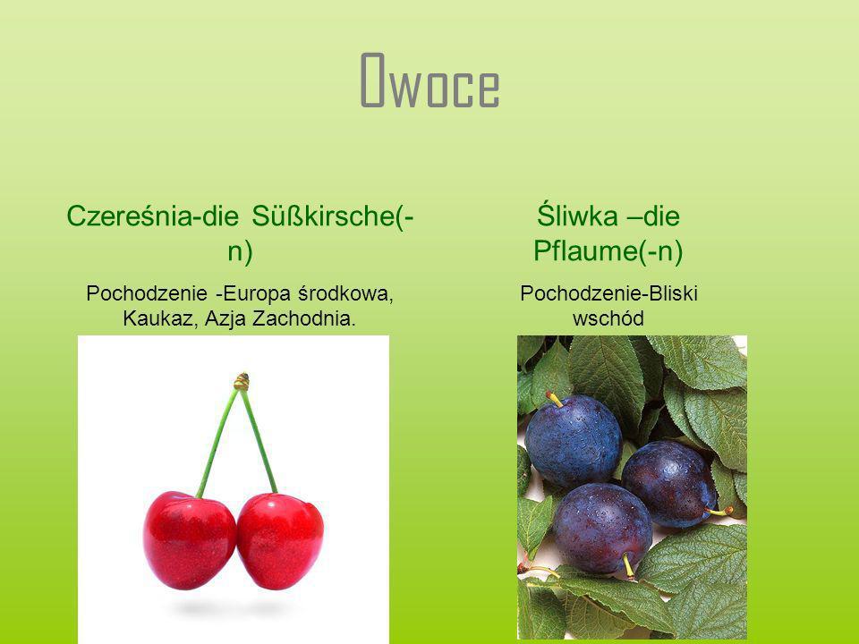 Owoce Czereśnia-die Süßkirsche(- n) Pochodzenie -Europa środkowa, Kaukaz, Azja Zachodnia. Śliwka –die Pflaume(-n) Pochodzenie-Bliski wschód