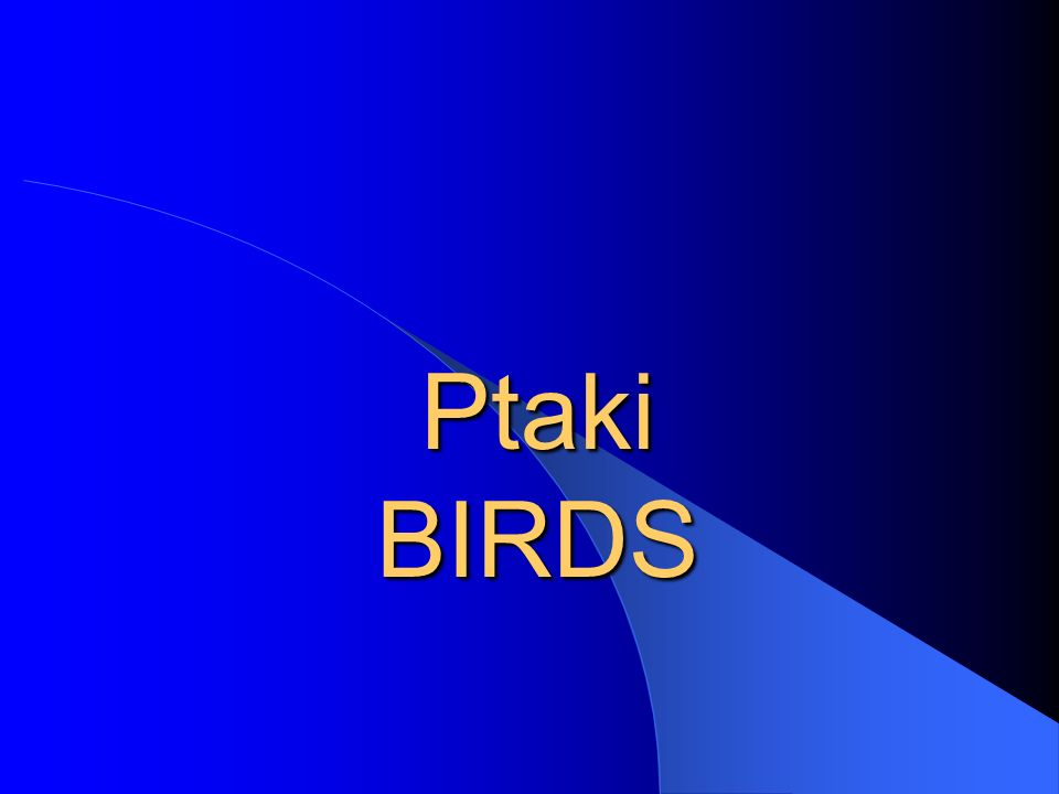Bocian biały Bocian biały (Ciconia ciconia), ptak z rodziny bocianowatych.