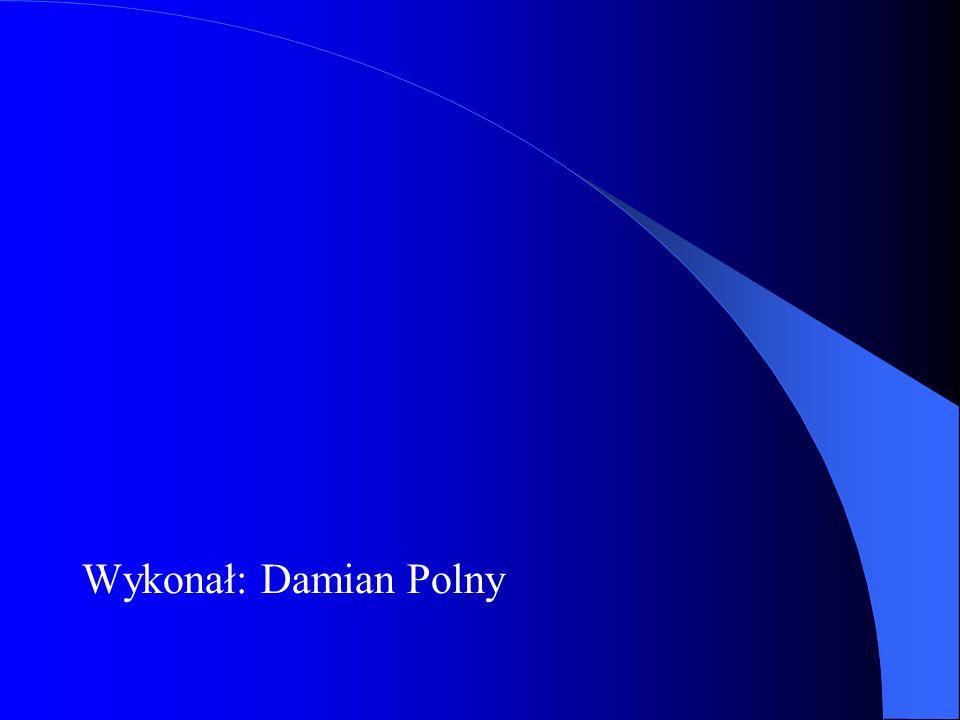 Wykonał: Damian Polny
