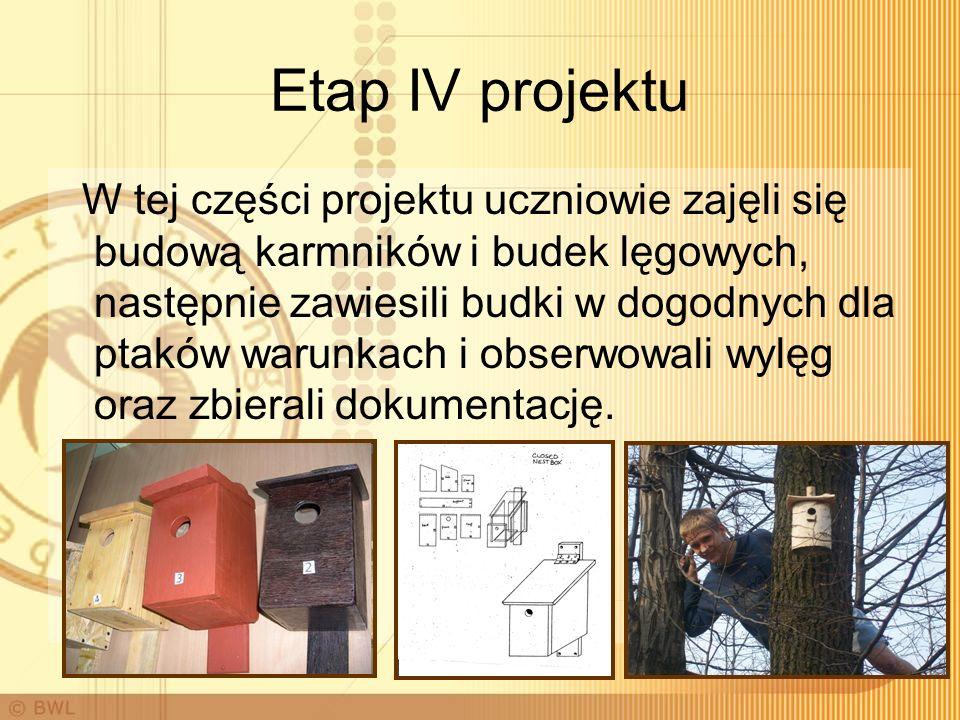 Etap IV projektu W tej części projektu uczniowie zajęli się budową karmników i budek lęgowych, następnie zawiesili budki w dogodnych dla ptaków warunkach i obserwowali wylęg oraz zbierali dokumentację.