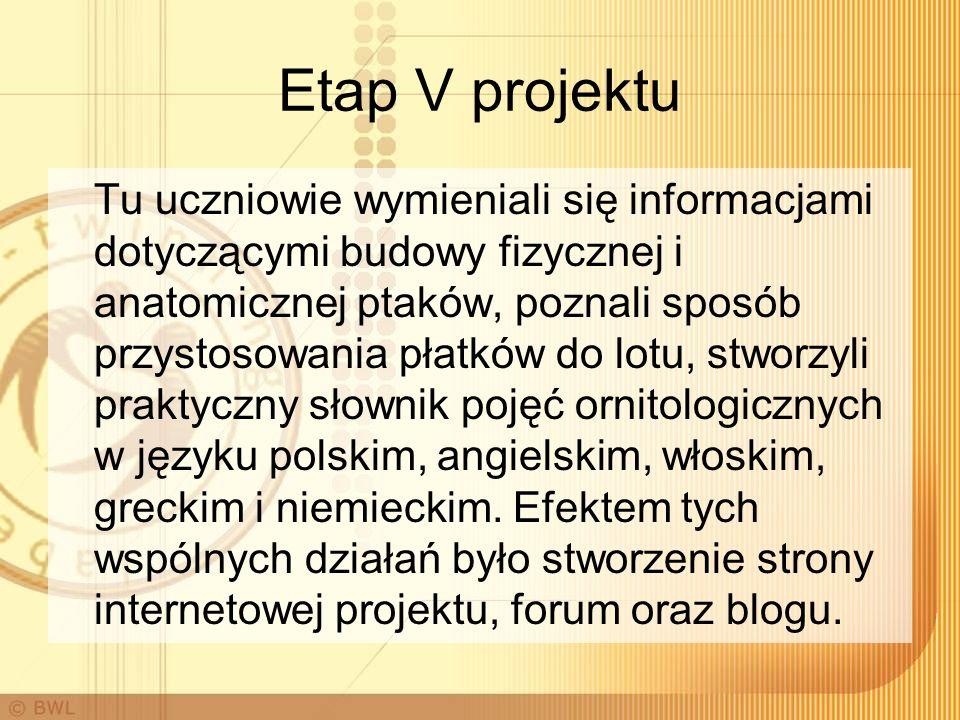 Etap V projektu Tu uczniowie wymieniali się informacjami dotyczącymi budowy fizycznej i anatomicznej ptaków, poznali sposób przystosowania płatków do lotu, stworzyli praktyczny słownik pojęć ornitologicznych w języku polskim, angielskim, włoskim, greckim i niemieckim.