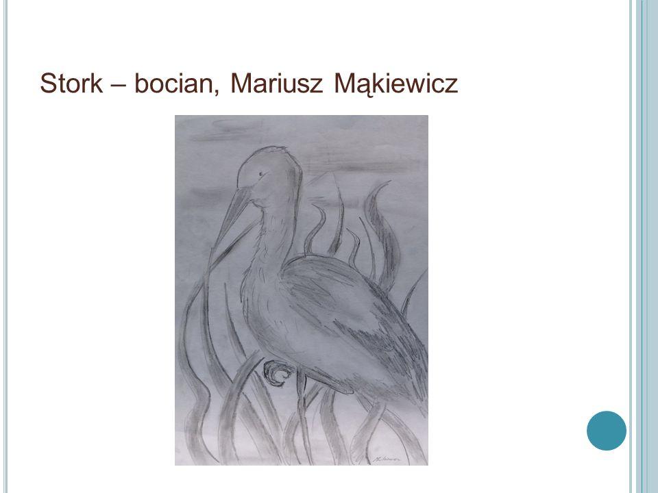 Stork – bocian, Maksim Afanasenka