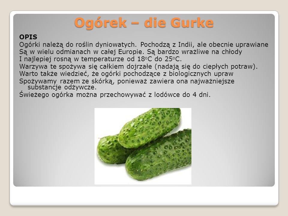 Ogórek – die Gurke OPIS Ogórki należą do roślin dyniowatych. Pochodzą z Indii, ale obecnie uprawiane Są w wielu odmianach w całej Europie. Są bardzo w