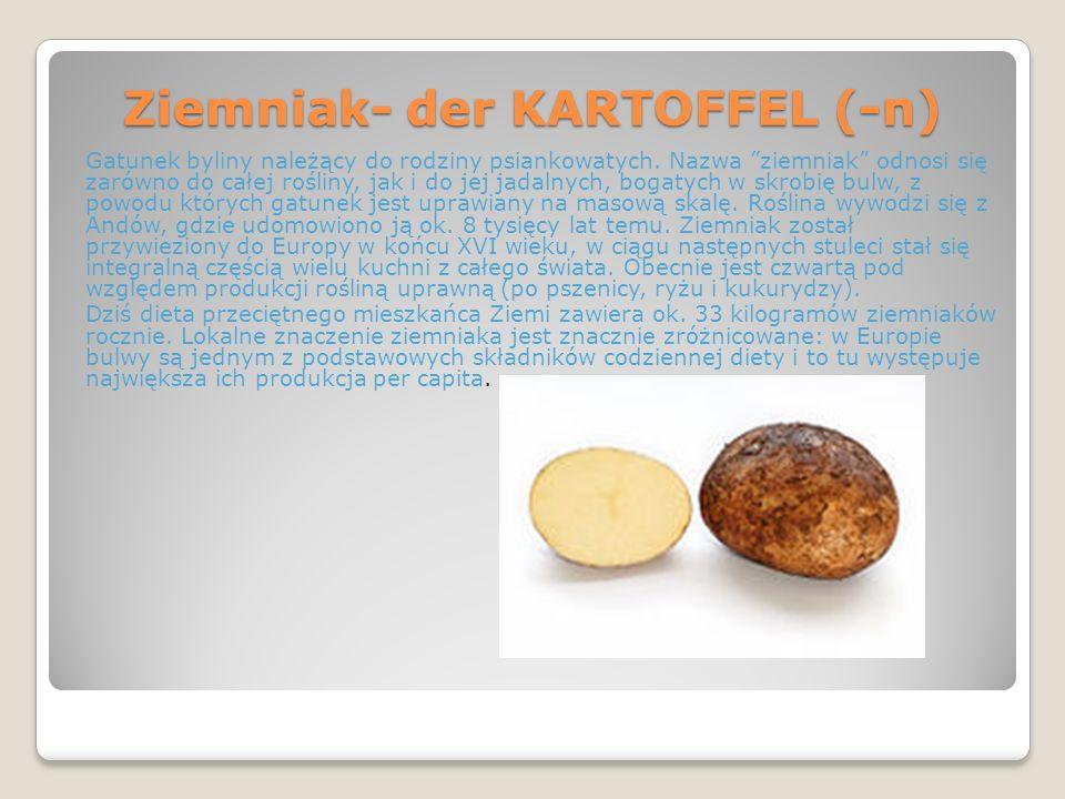 Ziemniak- der KARTOFFEL (-n) Gatunek byliny należący do rodziny psiankowatych. Nazwa ziemniak odnosi się zarówno do całej rośliny, jak i do jej jadaln