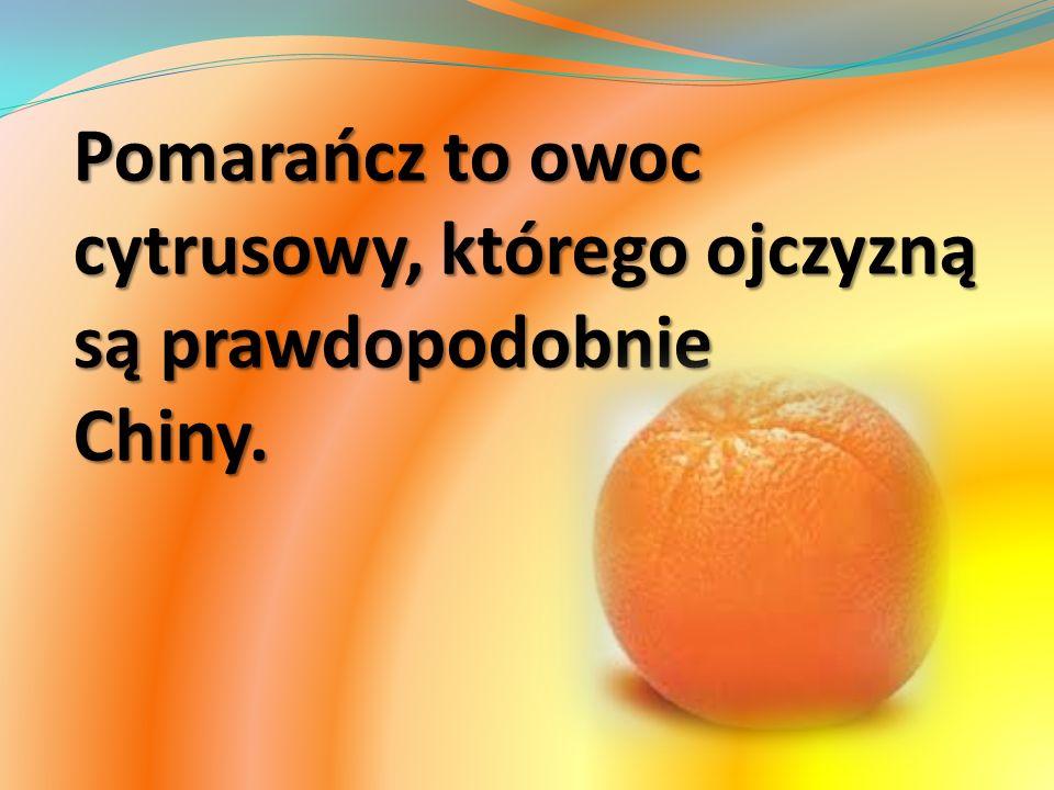 Pomarańcz to owoc cytrusowy, którego ojczyzną są prawdopodobnie Chiny.
