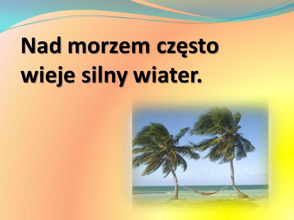 Nad morzem często wieje silny wiater.