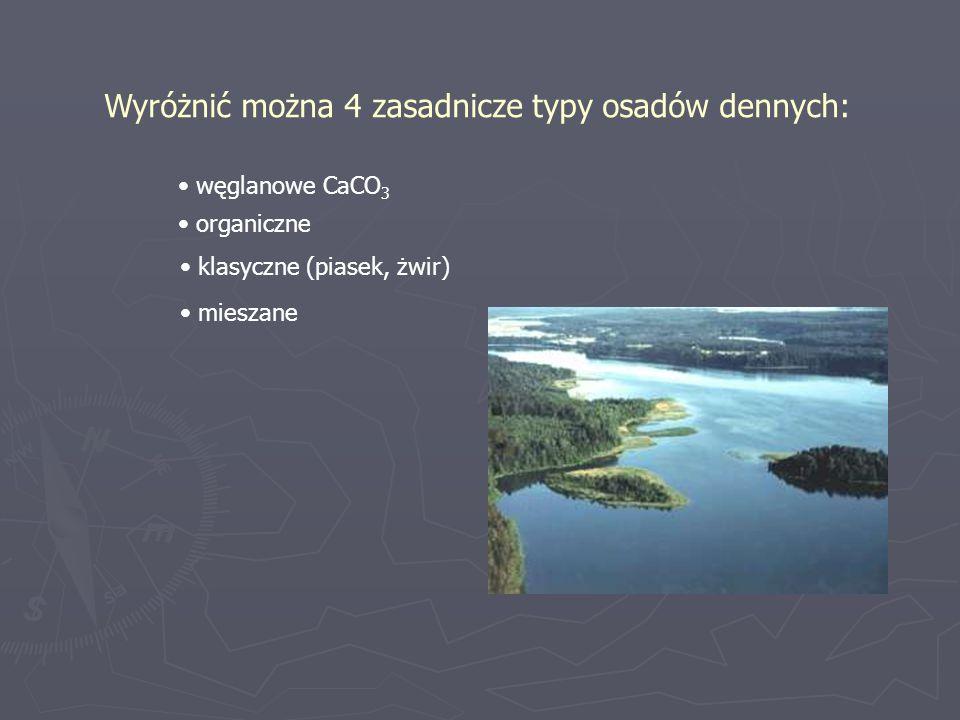 Wyróżnić można 4 zasadnicze typy osadów dennych: węglanowe CaCO 3 organiczne klasyczne (piasek, żwir) mieszane