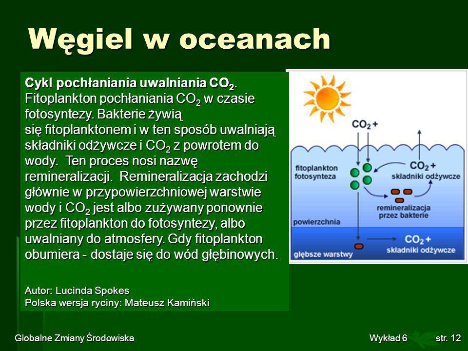Globalne Zmiany Środowiska Wykład 6str. 12 Węgiel w oceanach Cykl pochłaniania uwalniania CO 2. Fitoplankton pochłaniania CO 2 w czasie fotosyntezy. B