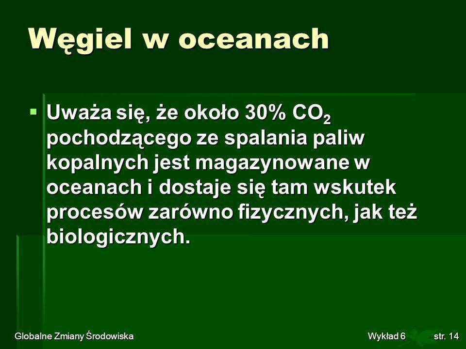Globalne Zmiany Środowiska Wykład 6str. 14 Węgiel w oceanach Uważa się, że około 30% CO 2 pochodzącego ze spalania paliw kopalnych jest magazynowane w
