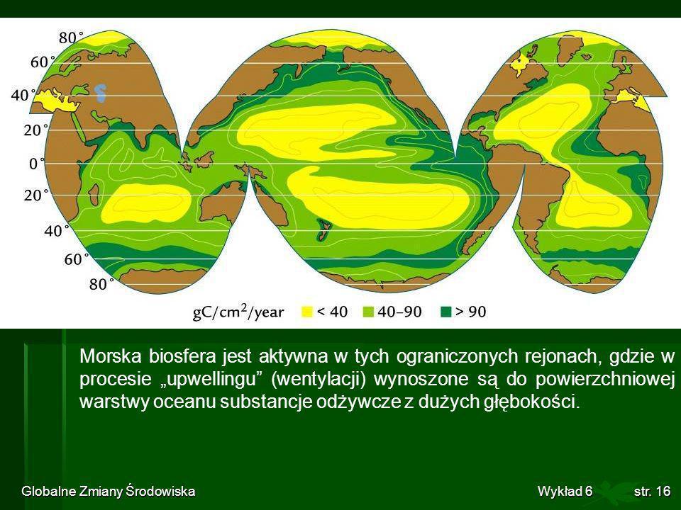 Globalne Zmiany Środowiska Wykład 6str. 16 Morska biosfera jest aktywna w tych ograniczonych rejonach, gdzie w procesie upwellingu (wentylacji) wynosz