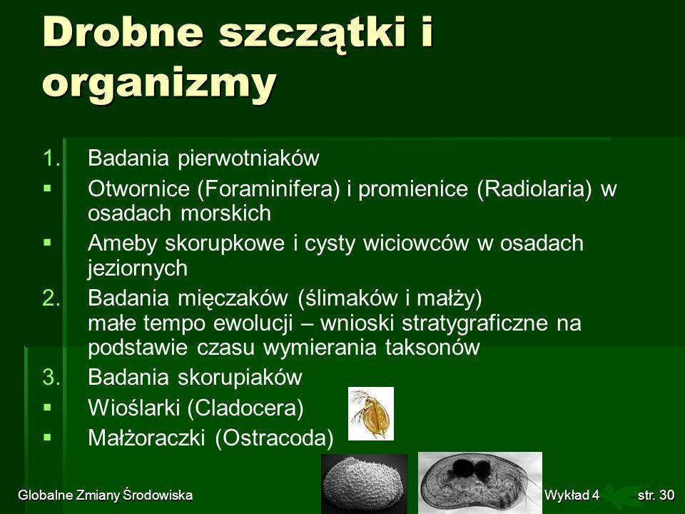 Globalne Zmiany Środowiska Wykład 4str. 30 Drobne szczątki i organizmy 1. 1.Badania pierwotniaków Otwornice (Foraminifera) i promienice (Radiolaria) w
