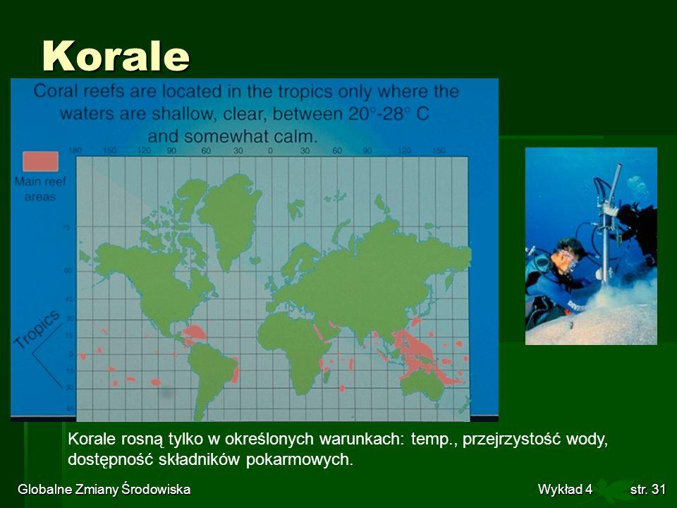Globalne Zmiany Środowiska Wykład 4str. 31 Korale Korale rosną tylko w określonych warunkach: temp., przejrzystość wody, dostępność składników pokarmo