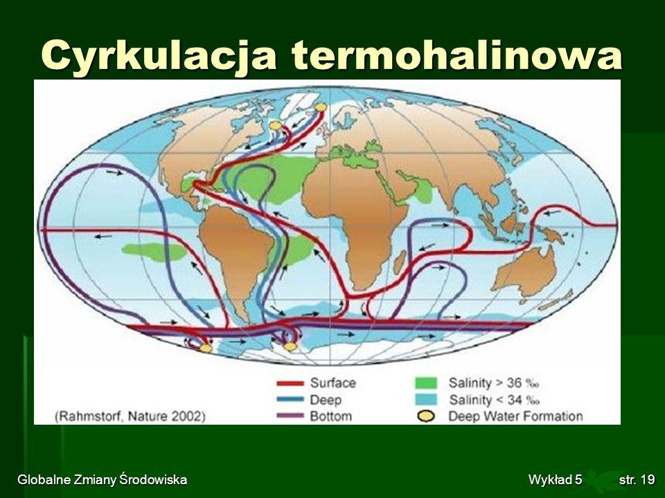 Globalne Zmiany Środowiska Wykład 5str. 19 Cyrkulacja termohalinowa