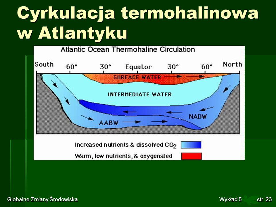 Globalne Zmiany Środowiska Wykład 5str. 23 Cyrkulacja termohalinowa w Atlantyku