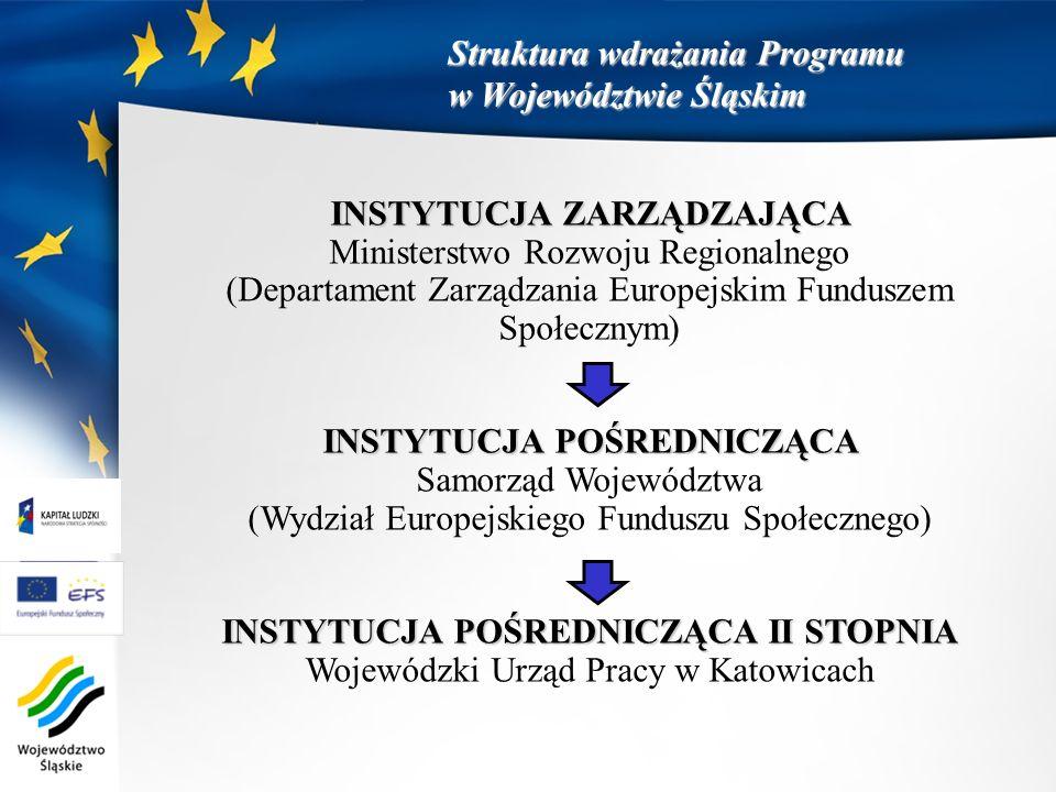 INSTYTUCJA ZARZĄDZAJĄCA Ministerstwo Rozwoju Regionalnego (Departament Zarządzania Europejskim Funduszem Społecznym) INSTYTUCJA POŚREDNICZĄCA Samorząd