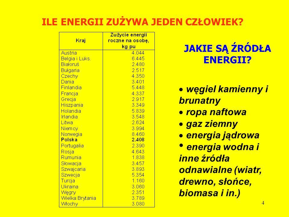 3 ILE ENERGII ZUŻYWA LUDZKOŚĆ?