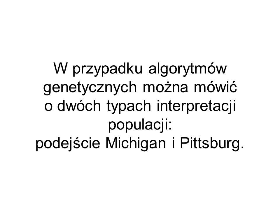 W przypadku algorytmów genetycznych można mówić o dwóch typach interpretacji populacji: podejście Michigan i Pittsburg.