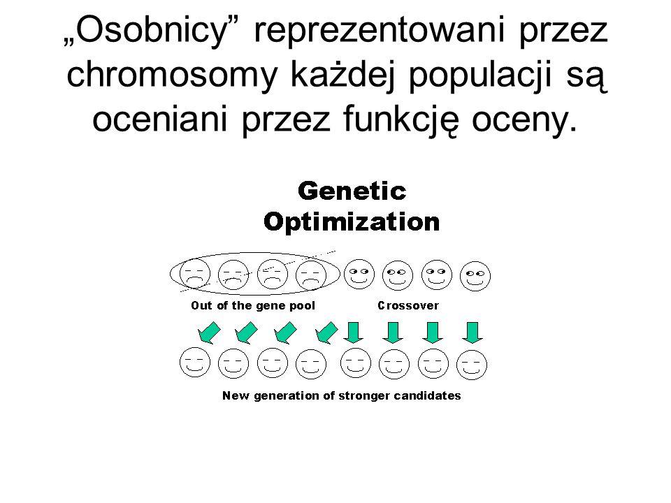 Osobnicy reprezentowani przez chromosomy każdej populacji są oceniani przez funkcję oceny.