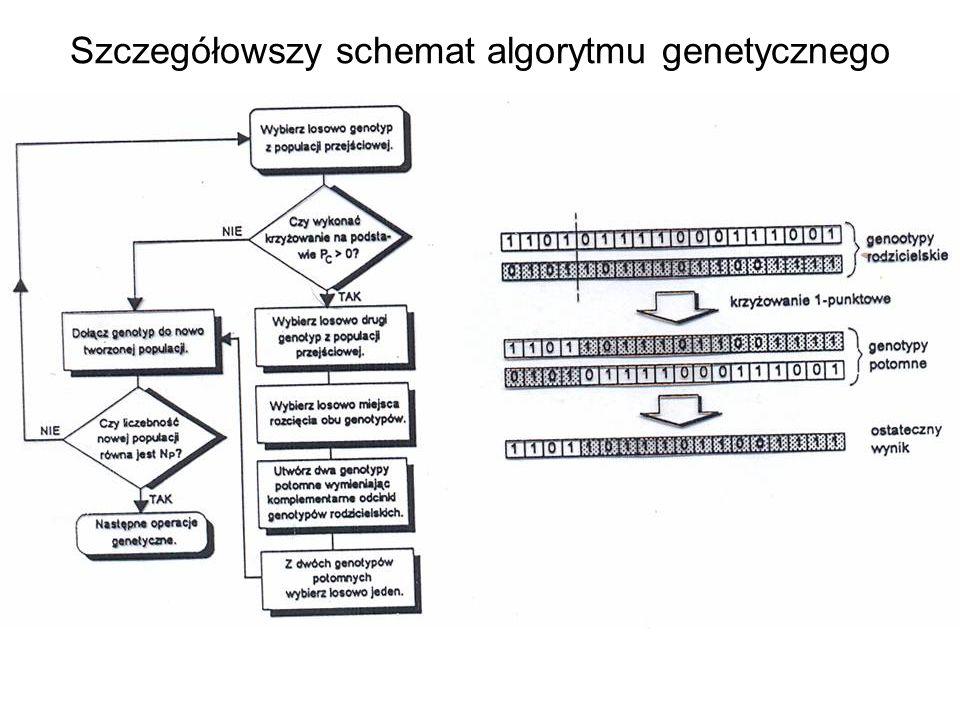 Szczegółowszy schemat algorytmu genetycznego