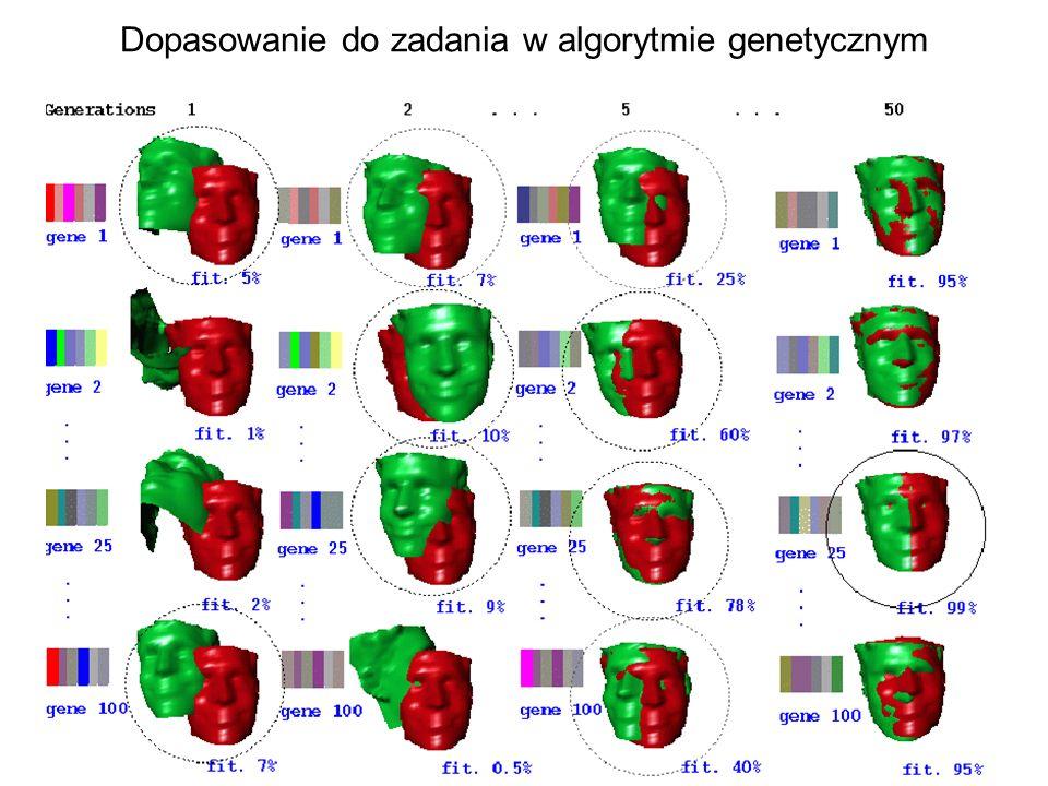 Dopasowanie do zadania w algorytmie genetycznym
