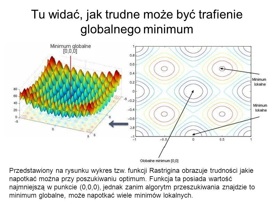 Tu widać, jak trudne może być trafienie globalnego minimum Przedstawiony na rysunku wykres tzw. funkcji Rastrigina obrazuje trudności jakie napotkać m