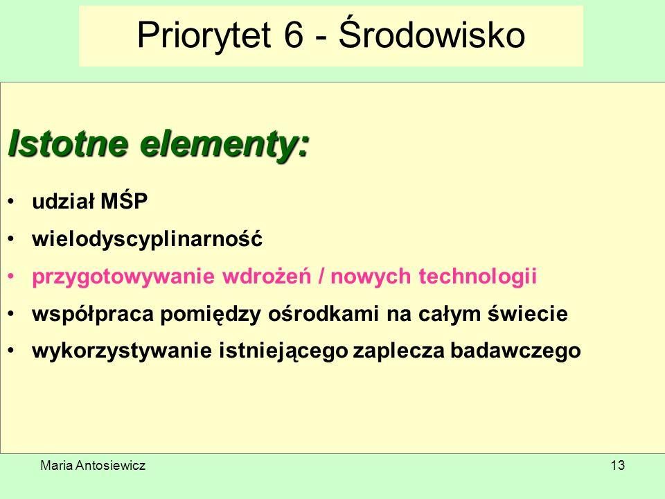 Maria Antosiewicz13 Priorytet 6 - Środowisko Istotne elementy: udział MŚP wielodyscyplinarność przygotowywanie wdrożeń / nowych technologii współpraca