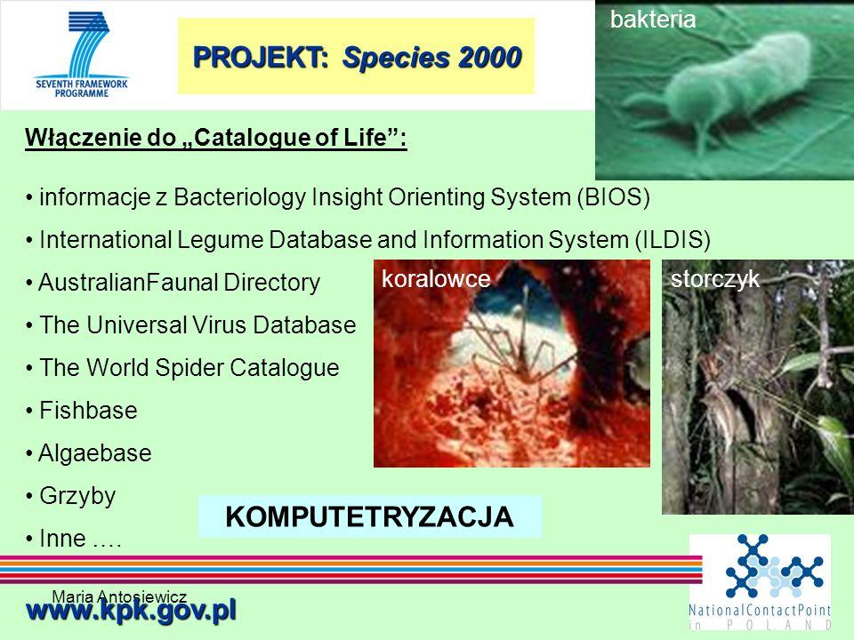 Maria Antosiewicz41 www.kpk.gov.pl Włączenie do Catalogue of Life: informacje z Bacteriology Insight Orienting System (BIOS) International Legume Data