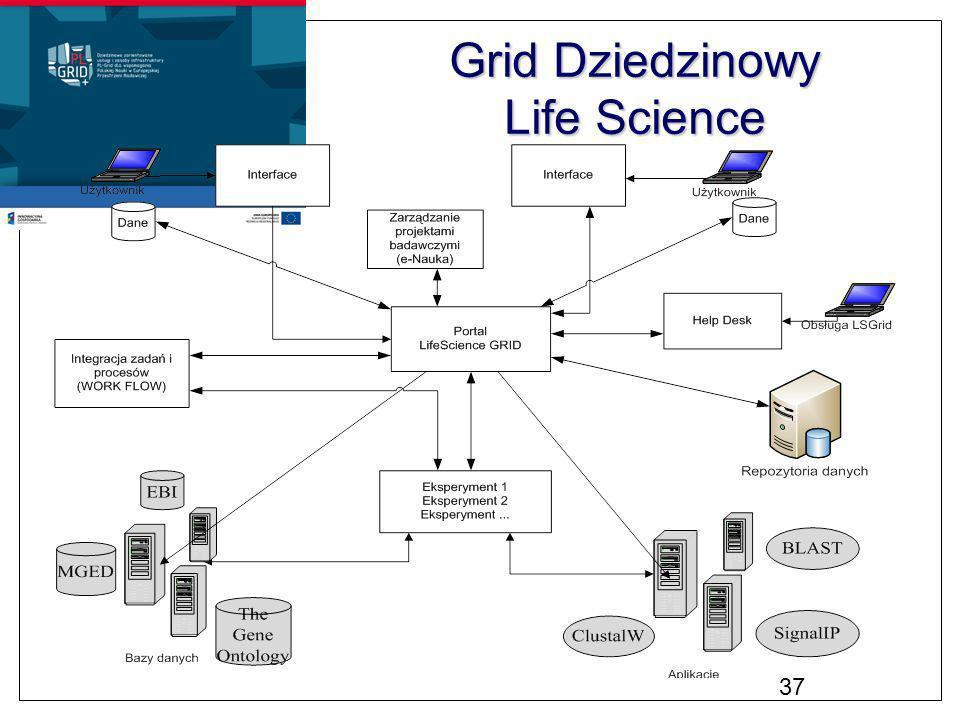 Grid Dziedzinowy Life Science 37