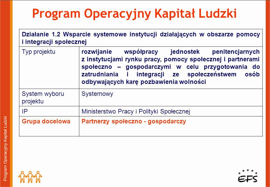Program Operacyjny Kapitał Ludzki Działanie 1.2 Wsparcie systemowe instytucji działających w obszarze pomocy i integracji społecznej Typ projekturozwi