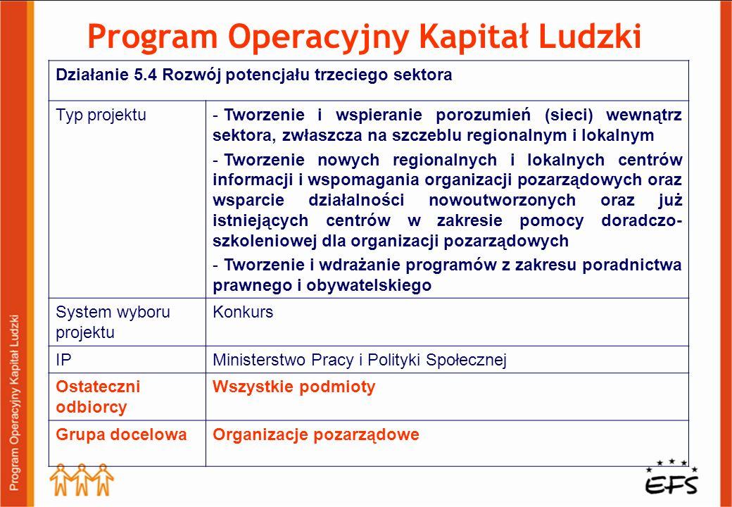 Program Operacyjny Kapitał Ludzki Działanie 5.4 Rozwój potencjału trzeciego sektora Typ projektu- Tworzenie i wspieranie porozumień (sieci) wewnątrz s