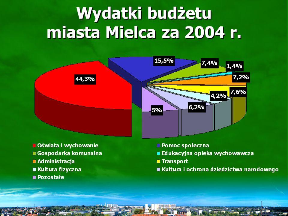Wykonanie wydatków miasta ogółem w latach 2003-2004 Wyszcze- gólnienie 2003 r.2004 r.