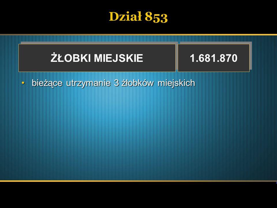 Dział 853 ŻŁOBKI MIEJSKIE ŻŁOBKI MIEJSKIE 1.681.870 bieżące utrzymanie 3 żłobków miejskichbieżące utrzymanie 3 żłobków miejskich