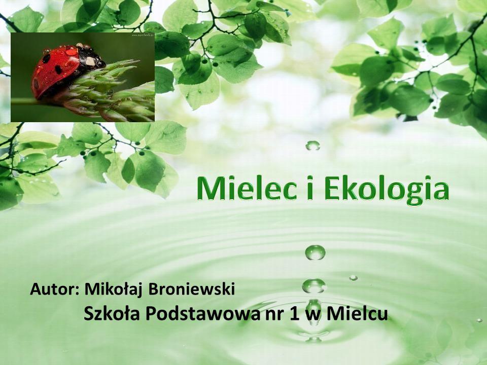 Autor: Mikołaj Broniewski Szkoła Podstawowa nr 1 w Mielcu