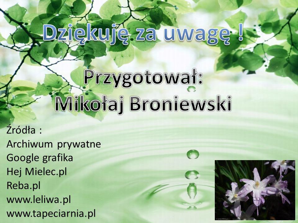 Źródła : Archiwum prywatne Google grafika Hej Mielec.pl Reba.pl www.leliwa.pl www.tapeciarnia.pl