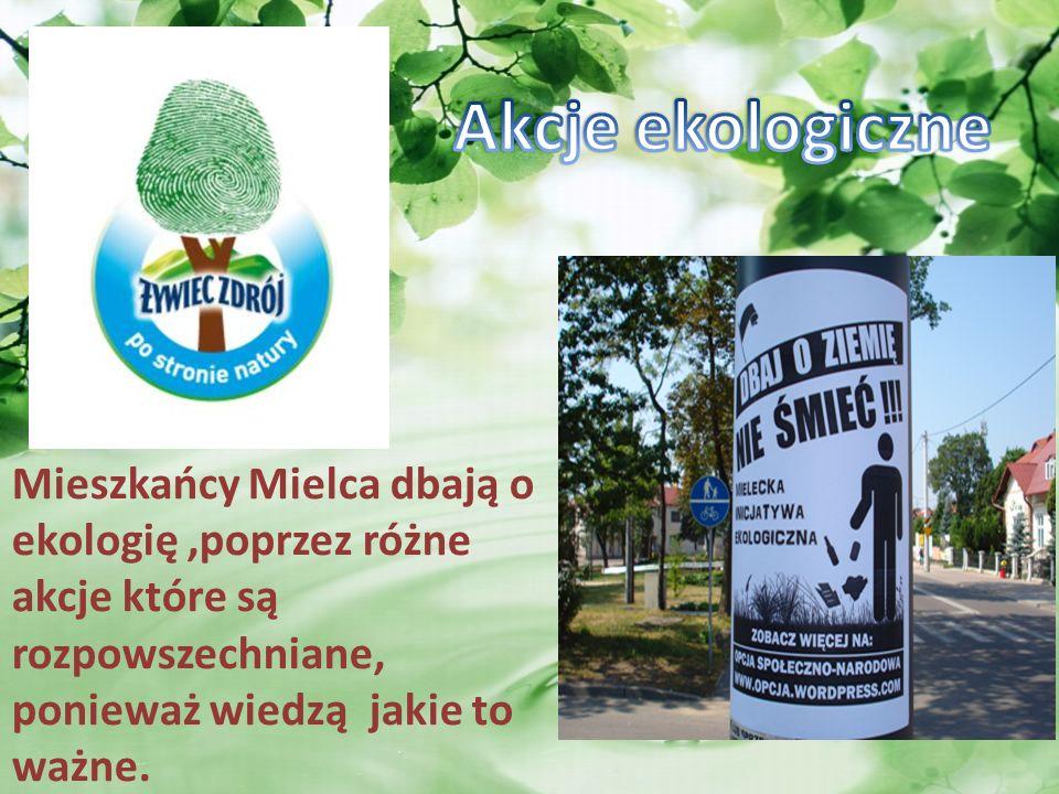 Mieszkańcy Mielca dbają o ekologię,poprzez różne akcje które są rozpowszechniane, ponieważ wiedzą jakie to ważne.